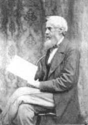 Sam Hollyer